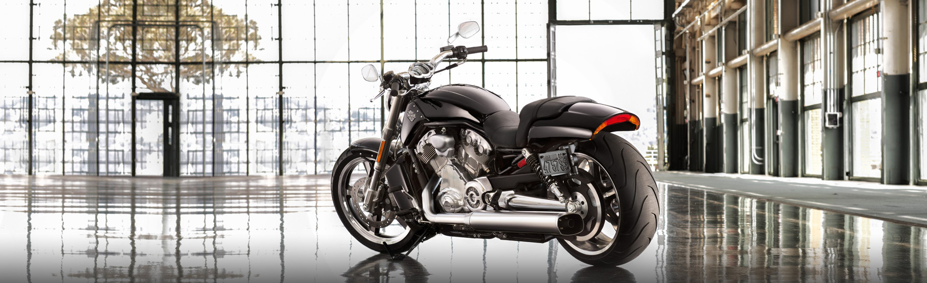 13-hd-v-rod-musle-bs-1
